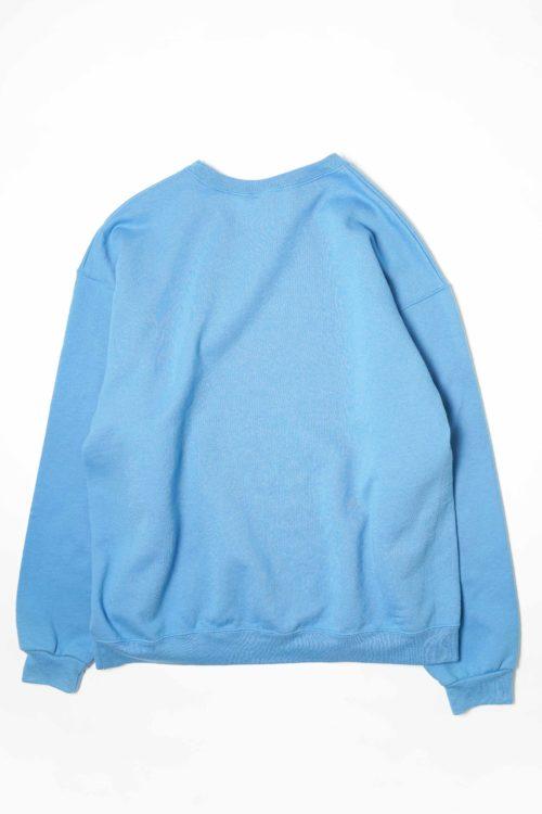 JERZEEZ BLUE COLOR SWEAT